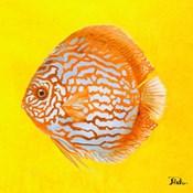 Bright Aquatic Life IV