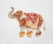 Pink Elephant IIA