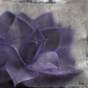 Lavender Succulent II