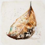 Global Leaves II