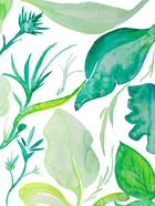 Green Water Leaves II