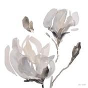 Gray Tonal Magnolias I