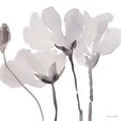 Gray Tonal Magnolias II
