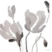 Gray Tonal Magnolias III