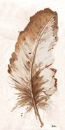 Brown Watercolor Feather II