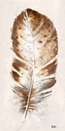 Brown Watercolor Feather I