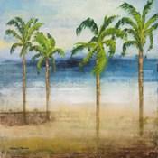 Ocean Palms I