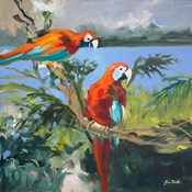 Parrots at Bay II