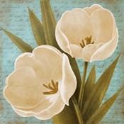 Blue Morning Tulips II