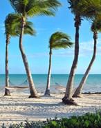 Shoreside Retreat
