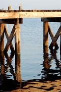 Waterside Beauty I
