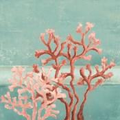 Teal Coral Reef II