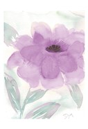 Lilac Peony II