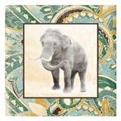 Floral Sea Elephant