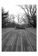 Central Park Bridge 4
