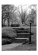 Central Park Stairs To Nowhere