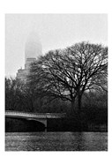 Central Park Bridge I