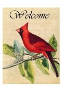 Cardinal Welcome