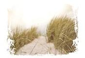 Coastal Photography 2