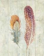 Natural Flora XI