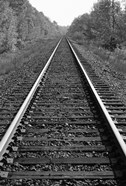 Black and White Tracks