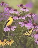 Butterfly & Finch Amongst Flowers