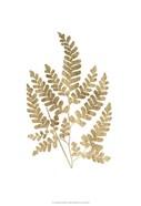 Graphic Gold Fern II
