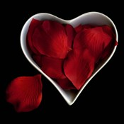 Love Overflowing - Heart Valentine Petals