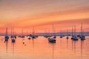 Pastel Harbor