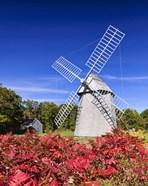 Old Higgins Farm Windmill