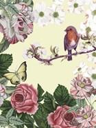 Bird Garden II