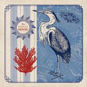 Sea Bird IV