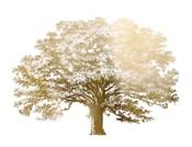 Gold Foil Elephant Tree - Metallic Foil