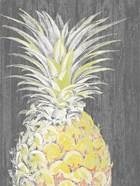 Vibrant Pineapple Splendor I