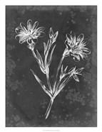 Slate Floral IV