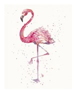 A Flamingo's Fancy