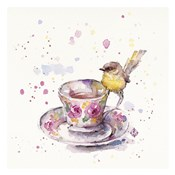 Tea Time (Eastern Yellow Robin)