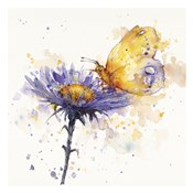 Flowers & Flutters