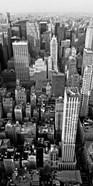 Skyscrapers in Manhattan II