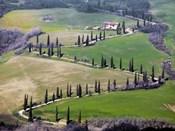 Road near Montepulciano, Tuscany