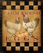 Farm Fresh Eggs I
