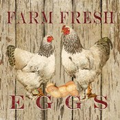 Farm Fresh Eggs II