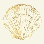 Coastal Breeze Shell Sketches V