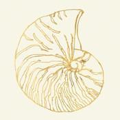 Coastal Breeze Shell Sketches VII