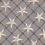 Net Full of Stars