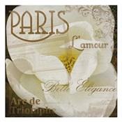 Magnolia Paris