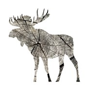 Wood Moose White Mate