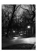 Central Park Night Stroll