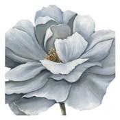 Blue Silken Bloom