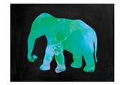 The Turquoise Elephant